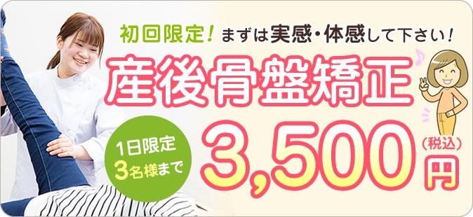 初回限定3,500円(税込)